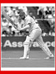 David CAPEL - England - Test Record