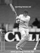 Neil FAIRBROTHER - England - Test Cricket Profile 1987-93