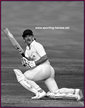 Allan LAMB - England - Test Record v India