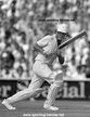 John WRIGHT - New Zealand - Test Profile 1978-93