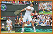 Fernando VERDASCO - Spain - Quarter finalist at Wimbledon 2013.