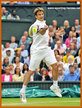 Tommy ROBREDO - Spain - 2013: Quarter finalist at The French & U.S. Championships.
