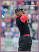 Tiger WOODS - U.S.A. - 2013: =4th at Masters & =6th at British Open.