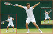 Ernests GULBIS - Latvia - 2014 Semi-finalist at French Open