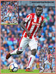 Mame Biram DIOUF - Stoke City FC - League Appearances