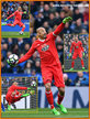 Heurelho GOMES - Watford FC - League Appearances