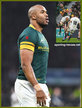 JP PIETERSEN - South Africa - International rugby caps 2013 - 2016