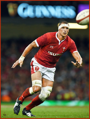 Aaron SHINGLER - Wales - 2019 Rugby World Cup games.